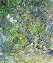 Two White Butterflies - Vincent Van Gogh