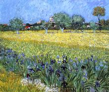 View of Arles with Irises - Vincent Van Gogh