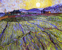 A Wheat Field with Rising Sun