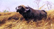 Buffalo Paintings