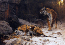 Tigers at a Drinking Pool - Wilhelm Kuhnert