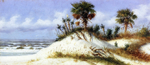 Florida Sand Dunes with Two Palm Trees