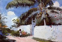 A Garden in Nassau - Winslow Homer