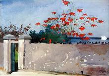 Walls Paintings