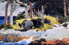 Bermuda Settlers - Winslow Homer