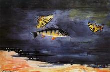 Fish and Butterflies - Winslow Homer