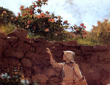 Girl in a Garden - Winslow Homer