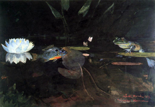 Mink Pond - Winslow Homer