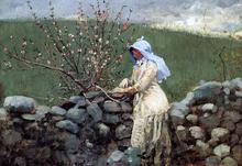Peach Blossoms - Winslow Homer