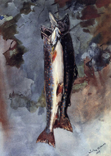 Two Trout - Winslow Homer